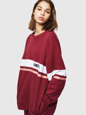 UFLT-PHYLO, Bordeaux - Sweaters